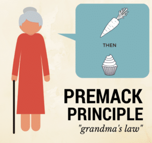 What Is The Premack Principle? Example