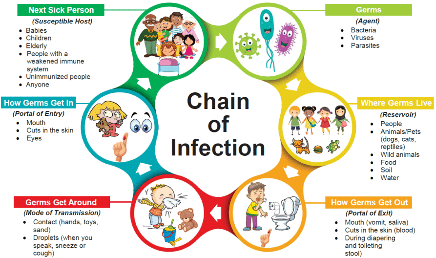 Chain Of Infection Definition?